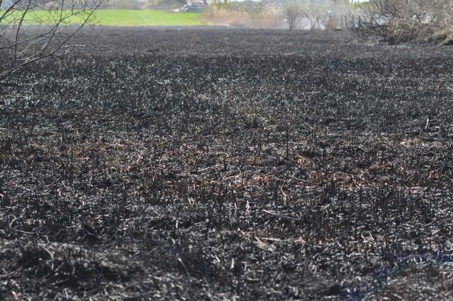 Pożar w Czajczu