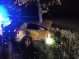 Niebezpieczny wieczór na drogach: zderzenie z drzewem koło Kostrzy, wypadek w Strzelcach