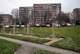 Po sprzeciwie mieszkańców ŁSM wycofała wnioski z urzędu, ale nie rezygnuje z inwestycji