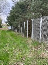 Złodzieje grasują na terenie byłego przejścia granicznego w Gubinku. Kradną... ogrodzenie! Policja zapowiada więcej patroli
