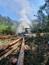 Gmina Czermin. Zapaliła się maszyna pracująca w lesie przy wycince drzew