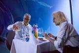 Nowa atrakcja we Wrocławiu! Możesz zjeść... podwodną kolację (ZDJĘCIA)
