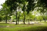 """W Bytomiu mają """"nowy"""" park. Wszystko przez browar [Zdjęcia]"""