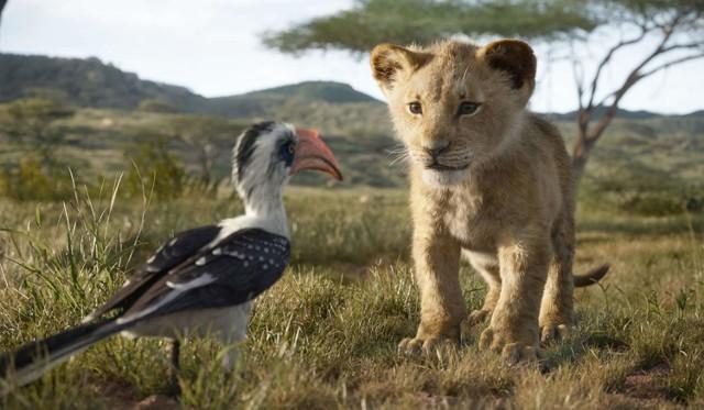 """Nie ma chyba osoby, która oglądając lata temu animację """"Król Lew"""", nie czekałaby na premierę jej fabularnej wersji. Wszystko wskazuje na to, że obraz w reżyserii Jona Favreau'a powtórzy sukces bajki z 1994 roku. Postaci wyglądają niemal jak żywe, a głos użyczył im m.in. Donald Glover (Simba), Chiwetel Ejiofor (Skaza), Billy Eichner (Timon), Seth Rogen (Pumba). Słynny utwór Eltona Johna Wyniki """"Can You Feel the Love Tonight"""" wykonał tym razem duet Beyonce i James Earl Jones. Nie możemy się doczekać, a wy?  Premiera: 19 lipca"""