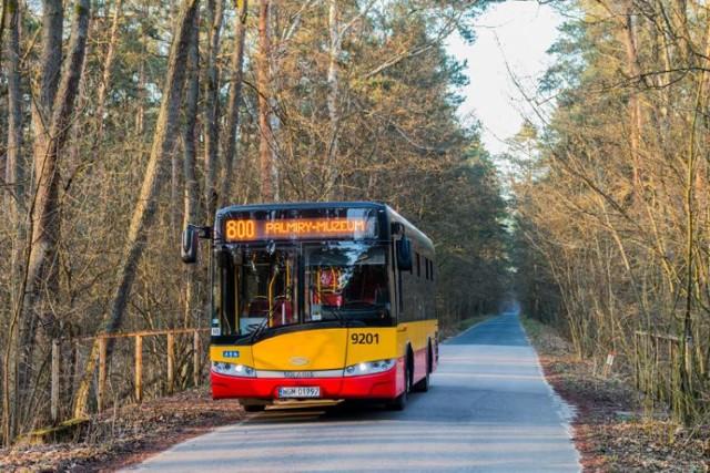 Wrócił autobus linii 800. Pojedzie do Kampinoskiego Parku Narodowego i Muzeum - Miejsca Pamięci Palmiry