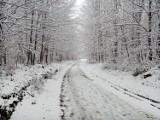 Zima w Górach Opawskich. Spadł pierwszy śnieg