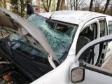 Dachowanie samochodu na ul. Dmowskiego w Piotrkowie. Renault przeleciał nad trawnikiem i wylądował na parkingu [ZDJĘCIA, FILM]