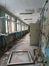 Mieszkańcy Żar w Czarnobylu. Zobaczcie niesamowite zdjęcia z wymarłego miasta na Ukrainie