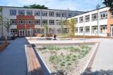 W wolskiej szkole otwarto proekologiczne patio. ''To nie fanaberia, to potrzeba''