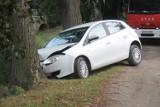 Samochód uderzył w przydrożne drzewo. Mało brakowało, by wpadł do stawu [ZDJĘCIA]
