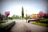 Miasto Zawiercie świętuje 105. rocznicę nadania praw miejskich. Zobacz, co proponuje mieszkańcom