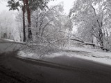 Powiat wadowicki. Śnieg spowodował utrudnienia na DK52 i DK28. Po opadach śniegu na drogach ślisko, sypią się kolizje [Aktualizacja]