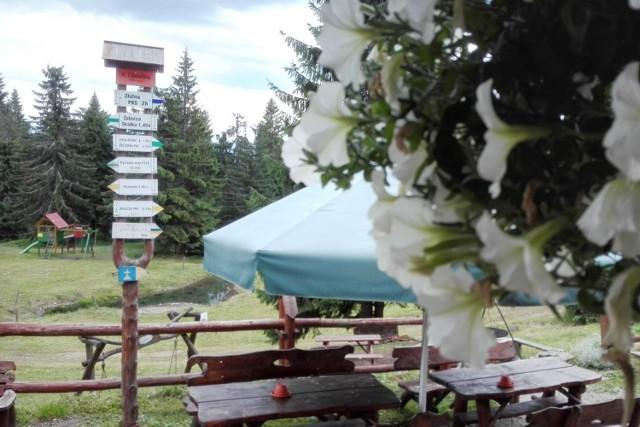W długi majowy weekend sporo osób wybierze się na górski szlak. Warto sprawdzić, w którym schronisku jest możliwość kupienia jedzenia na wynos. Kliknij w następne zdjęcie i sprawdź listę schronisk >>>