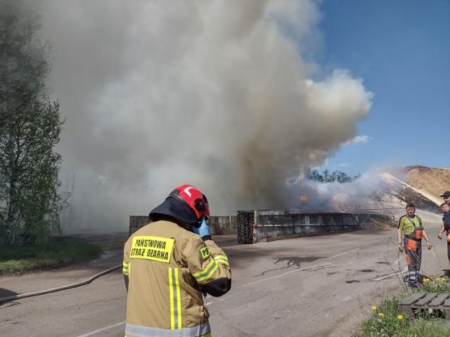 Ogień zajął składowisko trocin o pow. 2500 metrów kwadratowych  Zobacz kolejne zdjęcia. Przesuwaj zdjęcia w prawo - naciśnij strzałkę lub przycisk NASTĘPNE >>>