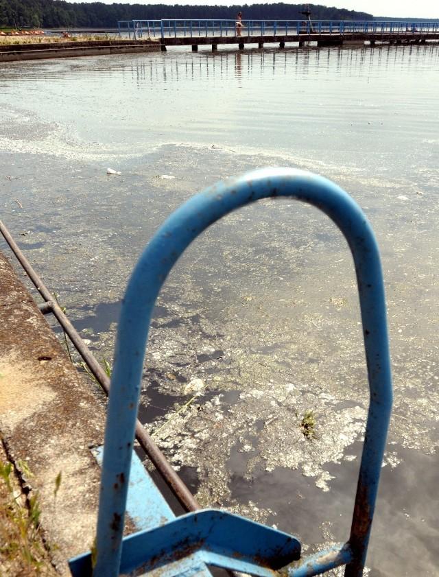 MOSiR przygotowuje się do sezonu. Na brzegu zalewu jednak dalej można zobaczyć nie tylko śmieci, ale także martwe ryby.