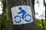 10 pomysłów na wycieczkę rowerową w okolicy Warszawy. Poznaj atrakcje turystyczne Mazowsza