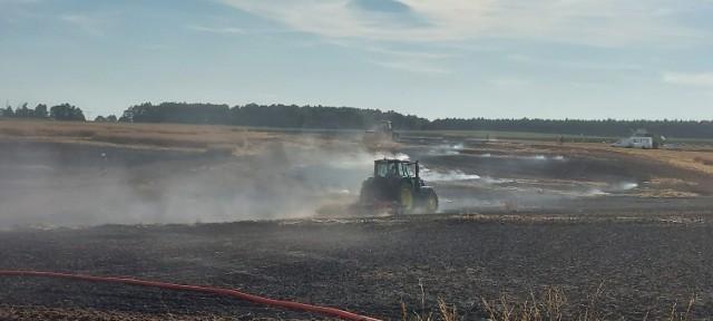 W piątek 30 lipca doszło do dużego pożaru na polach położonych w Małej Wsi pod Kargową. Z ogniem walczyło pięć zastępów straży pożarnej.  Niestety, ale pożary upraw, zbóż i pól w sezonie letni to plaga. Dochodzi do nich często i bardzo szybko się rozprzestrzeniają. Jak informują każdego lata strażacy, ważne jest, aby rolnicy starali się zapewnić odpowiednią ilość wody bądź gaśnic szczególnie w okresie żniw. Pożar łatwo jest ugasić w zarodku, ale kiedy pozwoli się na jego rozprzestrzenienie, sprawa staje się o wiele bardziej skomplikowana...  Na zdjęciach widać, jak ogromne straty spowodował ogień.