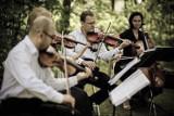 VI Letni Festiwal Muzyczny rozpoczyna się już dziś. Koncerty w gminie Pruszcz Gdański. Sprawdź program