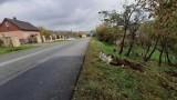 Mieszkańcy Gilowic nadal w szoku po wypadku, w którym zginęła ciężarna kobieta