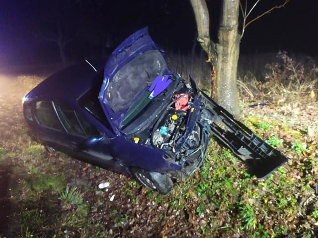 W Nowych Mostach samochód wypadł z drogi i uderzył w drzewo