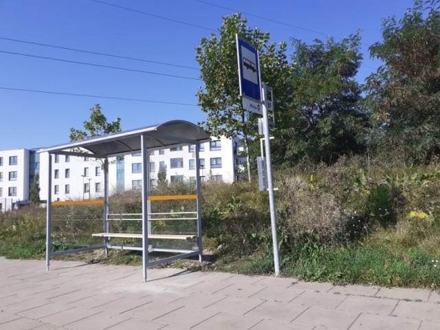 Będą nowe wiaty przystankowe w Szczecinie