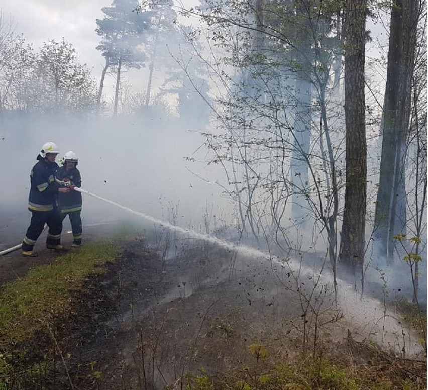 OSP: Pożar pod Zdunami w okolicach Ujazdu. Czy to kolejne podpalenie?