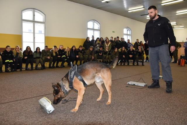Nietypowa lekcja z przewodnikiem psa w gnieźnieńskiej Szkole Technicznej Mundurowej