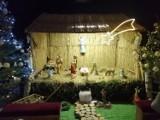 Czeladź: szopka bożonarodzeniowa w kościele św. Stanisława [ZDJĘCIA]