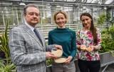 Naukowcy z UTP w Bydgoszczy chcą wyhodować nowe odmiany komosy ryżowej. Organizują konkurs kulinarny [zdjęcia]