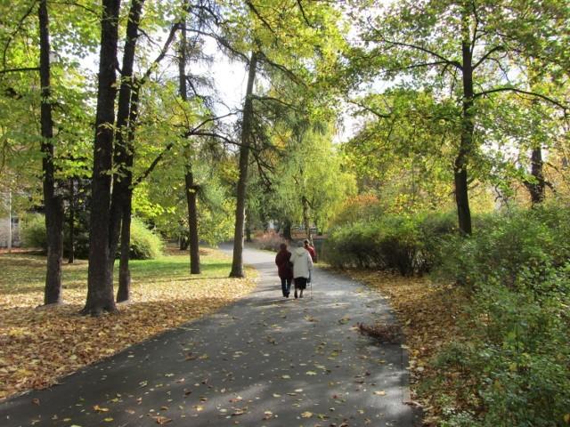 Jesień właśnie się rozpoczęła, liście drzew zmieniają kolor, a dni stają się coraz chłodniejsze. Na razie jednak możemy cieszyć się ładną pogodą, warto więc wybrać się na jesienny spacer. W galerii znajdziecie krótki opis poznańskich parków i wybranych miejsc w Poznaniu, do których warto wybrać się tej jesieni.  Sprawdź -->