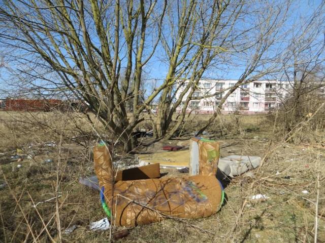 Dzikie wysypiska śmieci na Podlasiu