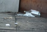 Żory: Trochę wstyd. Jest co sprzątać w parku miejskim  i przy murach obronnych
