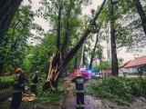 Silny wiatr w woj. śląskim - ponad 300 interwencji straży pożarnej. Drzewo przewróciło się na spacerowiczów, wiatr uszkodził dachy