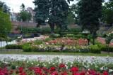 Oto 10 najpiękniejszych miejsc w Głogowie. Zachwycają!