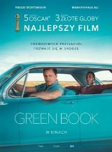 Rusza letnie kino plenerowe w Lublińcu. Co znajdzie się w repertuarze?