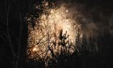 Jak wyglądała sylwestrowa noc w Chełmie? Zobacz zdjęcia