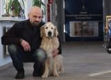 Ten pies pomagał ludziom wiele lat, teraz ludzie muszą o niego walczyć [WIDEO]