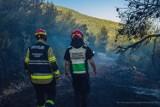 Misja Grecja 2021. Polscy strażacy wrócą do kraju jeszcze w poniedziałek? Wybuchł kolejny pożar
