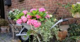Na balkonie i w ogrodzie, czy planujesz wiosenne zmiany w przydomowej przestrzeni?