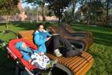 Park przy Bazylice w Rybniku: Ławki jak w sanatorium, nowy plac zabaw