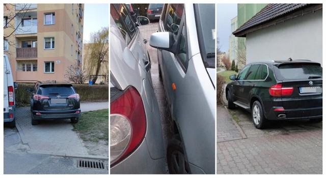 Mistrzowie parkowania w Świdnicy