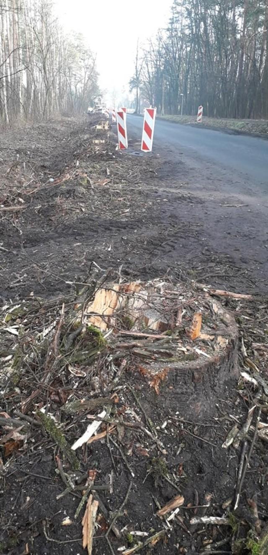 Kolejna aleja drzew została zlikwidowana na rzecz remontu i poszerzenia drogi. Samorządowcy tłumaczą, że to jedyny sposób, aby modernizacja odcinka w ogóle była możliwa.