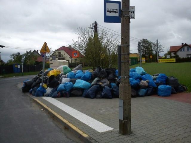 W środę rozstrzygnięto przetarg na wywóz śmieci z poznańskich ...