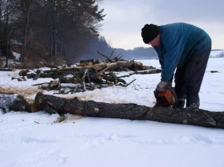 Zimą wokół jeziora Jeleń wycięto 556 drzew i krzewów.