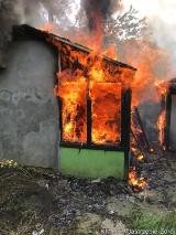 Pożar na ROD w Jastrzębiu. Przy Podhalańskiej płonęła altana. Czy to było podpalenie? Zobaczcie zdjęcia