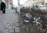 Kto i kiedy posprząta Wrocław po zimie?