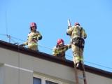 W Ustce strażacy przyszli z pomocą starszemu mężczyźnie