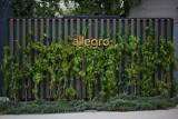"""Allegro ma już pierwsze automaty paczkowe. W Warszawie właśnie """"wyrosły"""" trzy ekologiczne maszyny"""