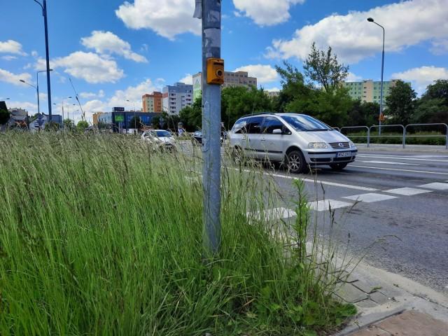 Trwa na skrzyżowaniu ulic Limanowskiego i Maratońskiej sięgają po pas, nie widać samochodów, ale zasłaniają też pieszych.