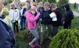 Minisad z tradycyjnymi jabłoniami i śliwami przy Szkole Podstawowej nr 11 w Grudziądzu założyli uczniowie [zdjęcia]